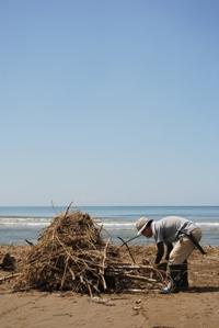 柴垣海岸清掃の様子